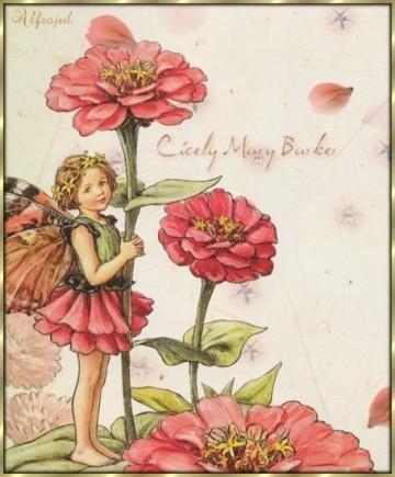 Il significato dei fiori il cassetto degli appunti for I fiori della balsamina